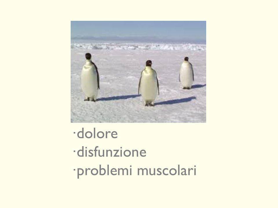 dolore disfunzione problemi muscolari