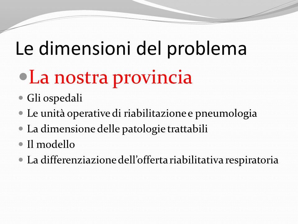 Le dimensioni del problema La nostra provincia Gli ospedali Le unità operative di riabilitazione e pneumologia La dimensione delle patologie trattabil