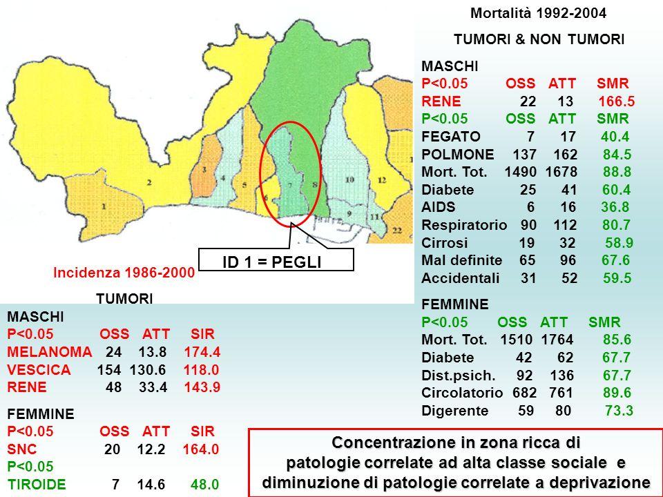 ID 1 = PEGLI Incidenza 1986-2000 TUMORI MASCHI P<0.05 OSS ATT SIR MELANOMA 24 13.8 174.4 VESCICA 154 130.6 118.0 RENE 48 33.4 143.9 FEMMINE P<0.05 OSS ATT SIR SNC 20 12.2 164.0 P<0.05 TIROIDE 7 14.6 48.0 Mortalità 1992-2004 TUMORI & NON TUMORI MASCHI P<0.05 OSS ATT SMR RENE 22 13 166.5 P<0.05 OSS ATT SMR FEGATO 7 17 40.4 POLMONE 137 162 84.5 Mort.