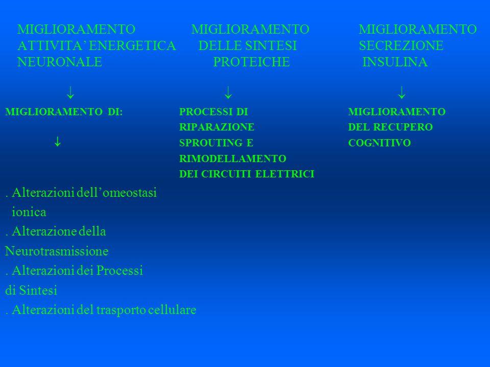 MIGLIORAMENTO MIGLIORAMENTO MIGLIORAMENTO ATTIVITA ENERGETICA DELLE SINTESI SECREZIONE NEURONALEPROTEICHE INSULINA MIGLIORAMENTO DI: PROCESSI DIMIGLIO