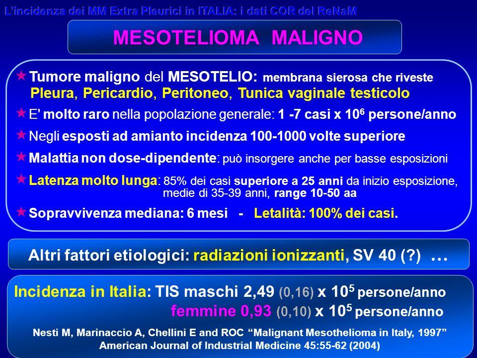 23 Registro Mesoteliomi Regione Emilia-Romagna C/O DIPARTIMENTO di SANITA PUBBLICA AUSL REGGIO EMILIA G r a z i e Lincidenza dei MMEP in Italia: i dati dei COR ReNaM A.