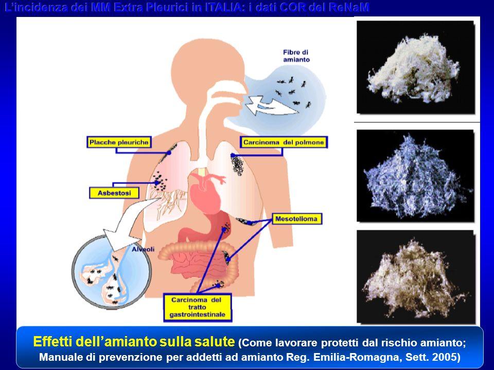 3 Effetti dellamianto sulla salute (Come lavorare protetti dal rischio amianto; Manuale di prevenzione per addetti ad amianto Reg.
