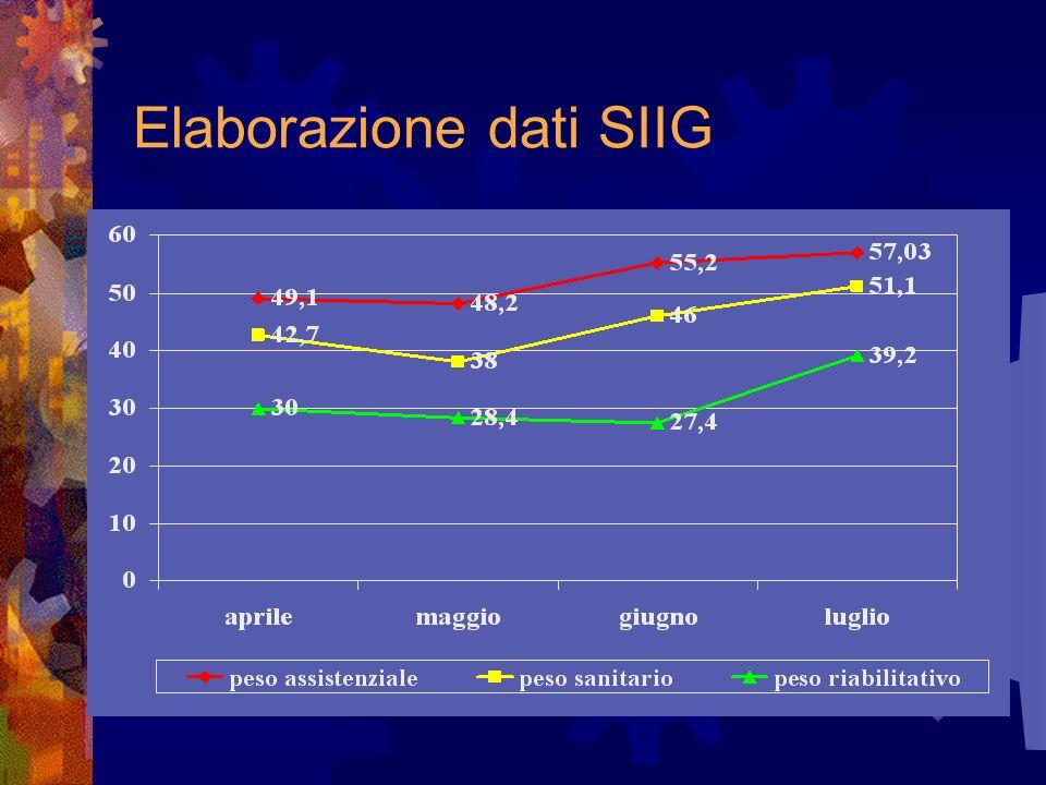 Elaborazione dati SIIG