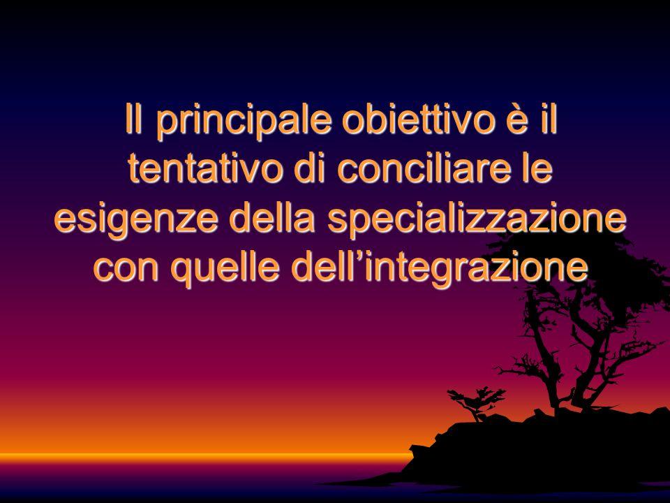 Il principale obiettivo è il tentativo di conciliare le esigenze della specializzazione con quelle dellintegrazione