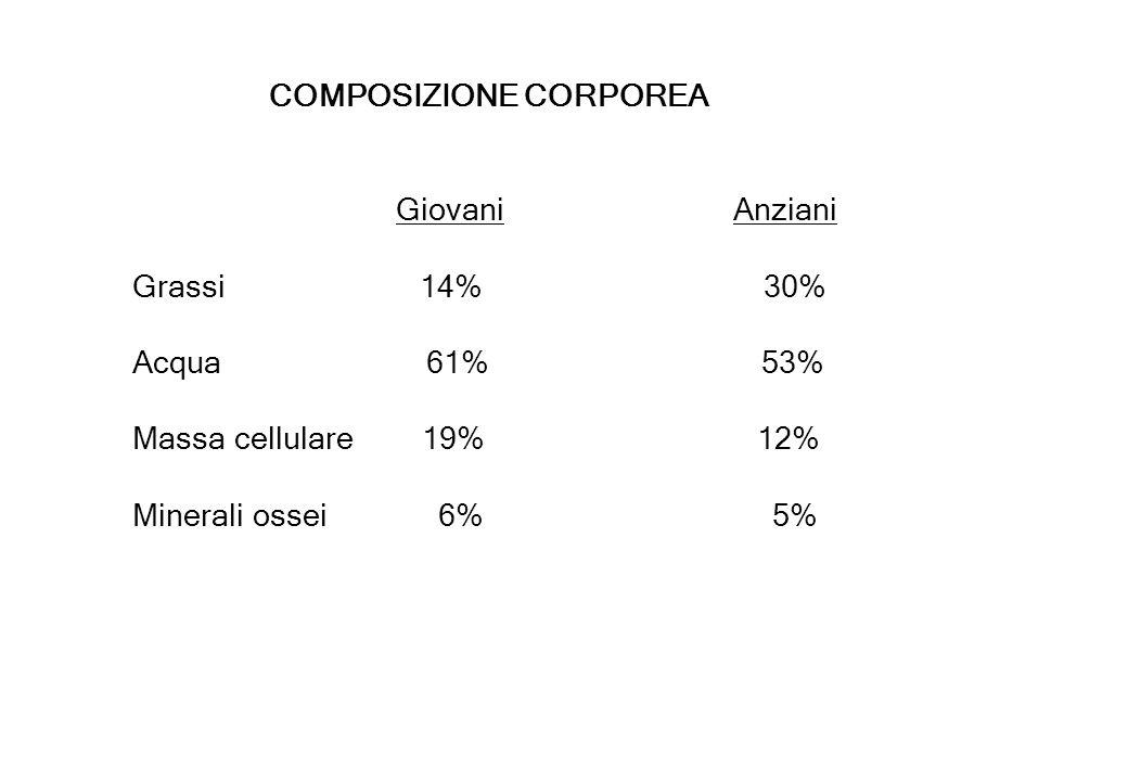 COMPOSIZIONE CORPOREA Giovani Anziani Grassi 14% 30% Acqua 61% 53% Massa cellulare 19% 12% Minerali ossei 6% 5%