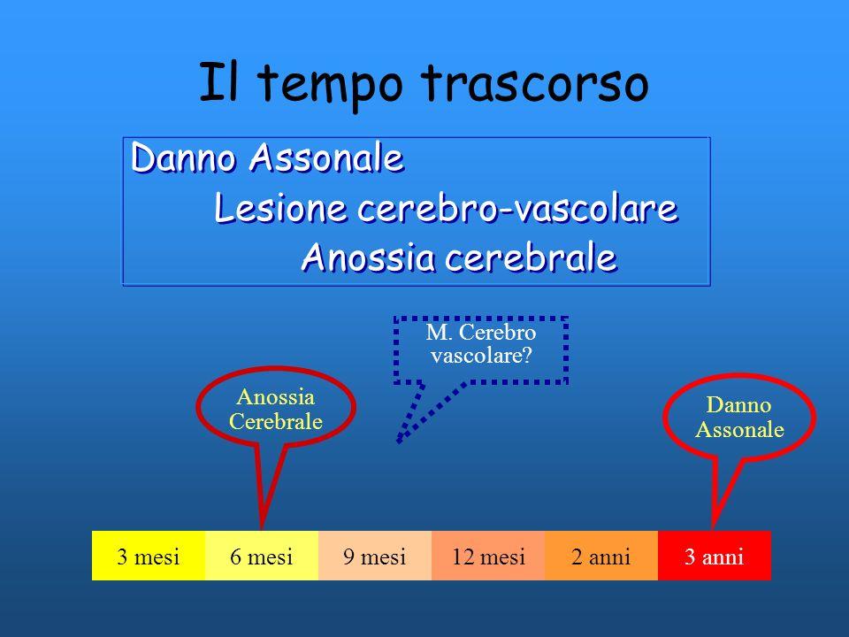 Il tempo trascorso Danno Assonale Lesione cerebro-vascolare Anossia cerebrale Danno Assonale Lesione cerebro-vascolare Anossia cerebrale Anossia Cereb