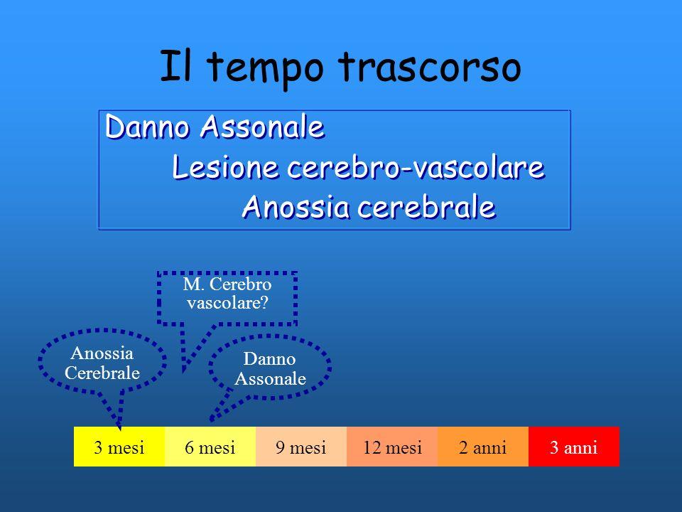 Il tempo trascorso Danno Assonale Lesione cerebro-vascolare Anossia cerebrale Danno Assonale Lesione cerebro-vascolare Anossia cerebrale 3 mesi6 mesi9