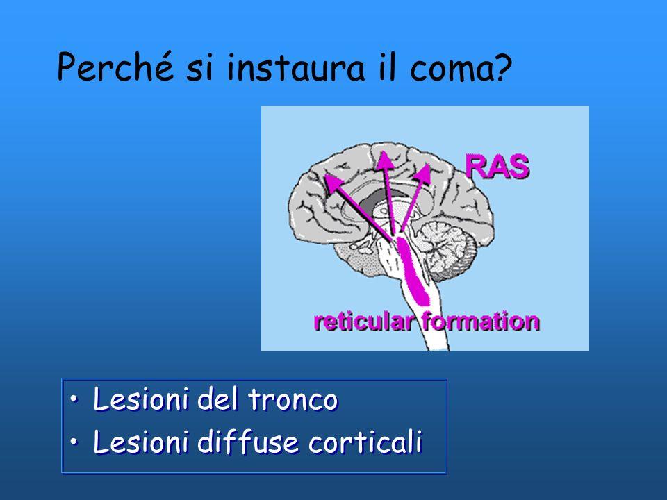 Perché si instaura il coma? Lesioni del tronco Lesioni diffuse corticali Lesioni del tronco Lesioni diffuse corticali