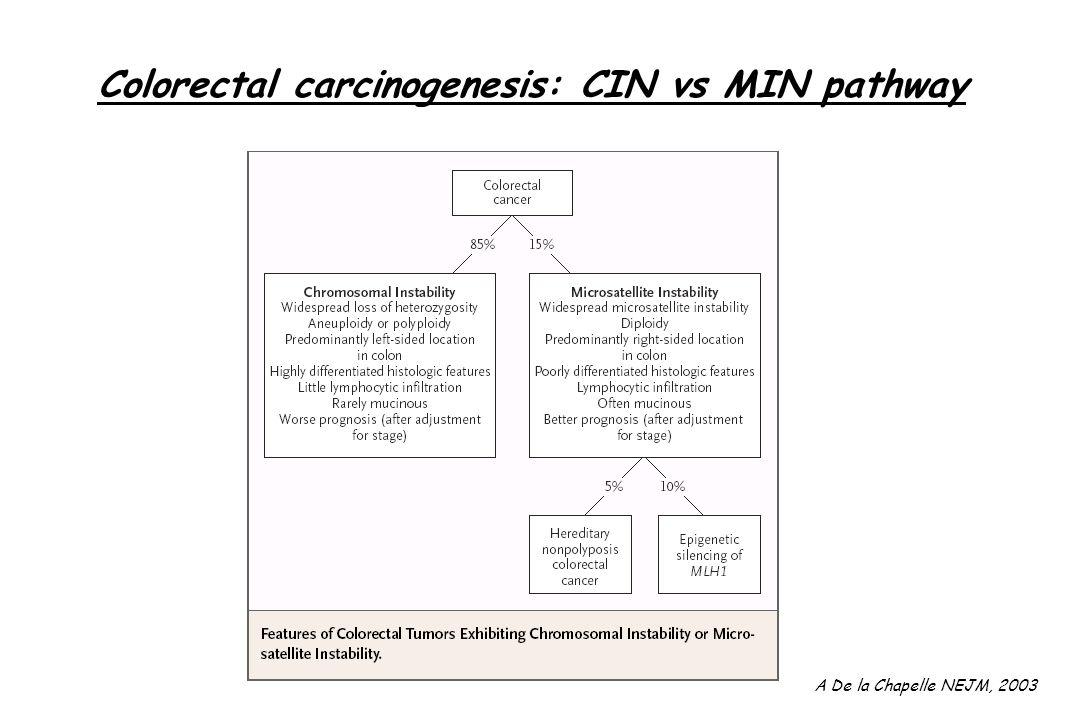 Colorectal carcinogenesis: CIN vs MIN pathway A De la Chapelle NEJM, 2003
