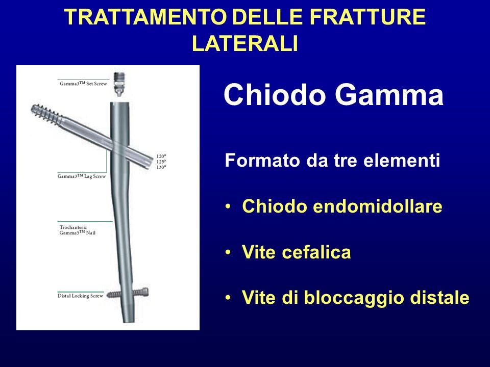 TRATTAMENTO DELLE FRATTURE LATERALI Chiodo Gamma Formato da tre elementi Chiodo endomidollare Vite cefalica Vite di bloccaggio distale