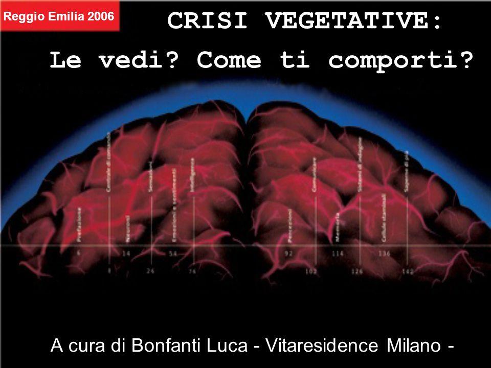 CRISI VEGETATIVE: A cura di Bonfanti Luca - Vitaresidence Milano - Le vedi? Come ti comporti? Reggio Emilia 2006