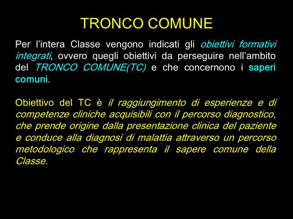 TRONCO COMUNE Per lintera Classe vengono indicati gli obiettivi formativi integrati, ovvero quegli obiettivi da perseguire nellambito del TRONCO COMUN