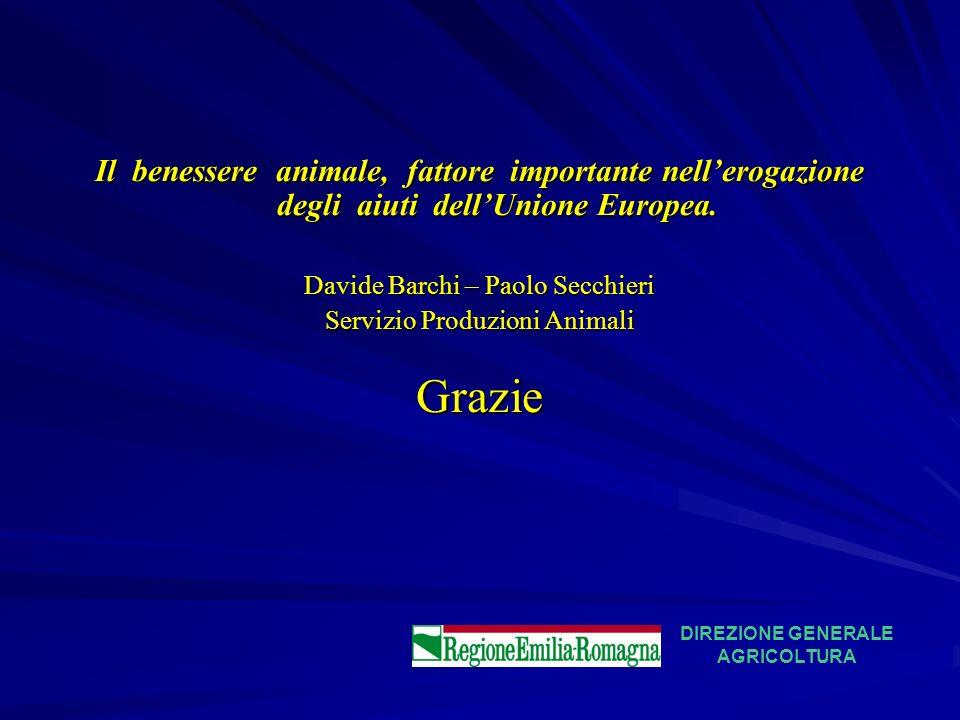 Il benessere animale, fattore importante nellerogazione degli aiuti dellUnione Europea. Davide Barchi – Paolo Secchieri Servizio Produzioni Animali Gr