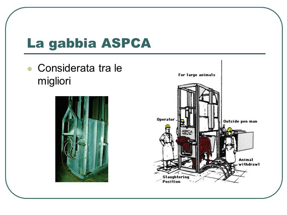 La gabbia ASPCA Considerata tra le migliori