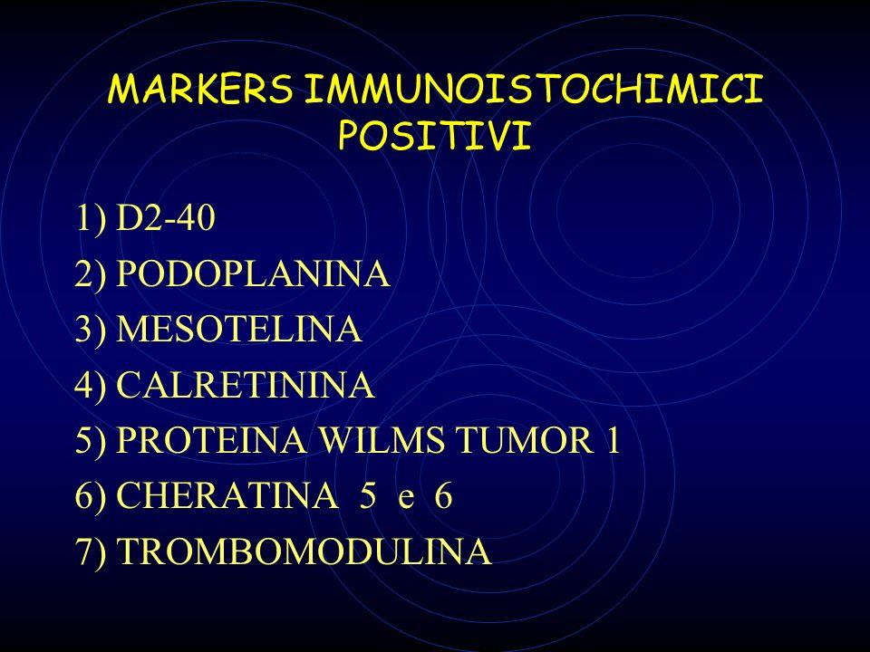 MARKERS IMMUNOISTOCHIMICI POSITIVI 1) D2-40 2) PODOPLANINA 3) MESOTELINA 4) CALRETININA 5) PROTEINA WILMS TUMOR 1 6) CHERATINA 5 e 6 7) TROMBOMODULINA