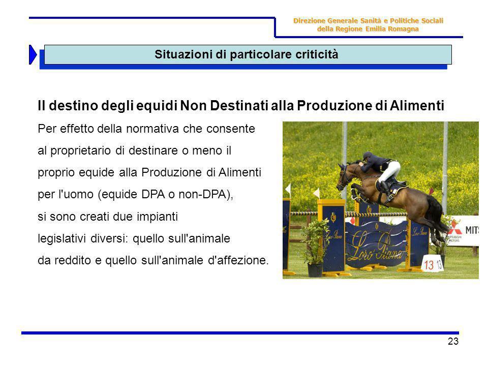 23 Situazioni di particolare criticità Direzione Generale Sanità e Politiche Sociali della Regione Emilia Romagna Il destino degli equidi Non Destinat