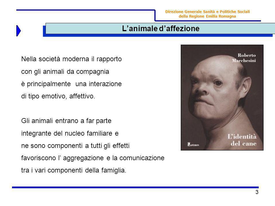 3 Lanimale daffezione Direzione Generale Sanità e Politiche Sociali della Regione Emilia Romagna Nella società moderna il rapporto con gli animali da