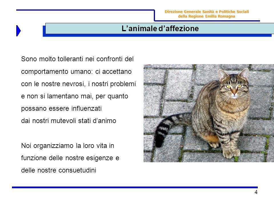 4 Lanimale daffezione Direzione Generale Sanità e Politiche Sociali della Regione Emilia Romagna Sono molto tolleranti nei confronti del comportamento