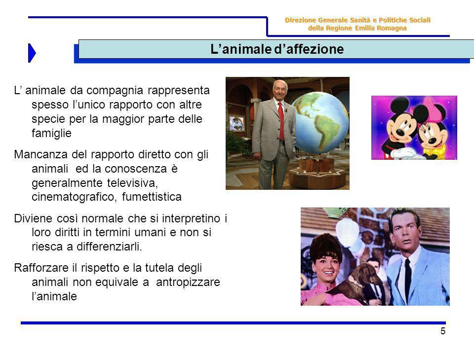 5 Lanimale daffezione Direzione Generale Sanità e Politiche Sociali della Regione Emilia Romagna L animale da compagnia rappresenta spesso lunico rapp