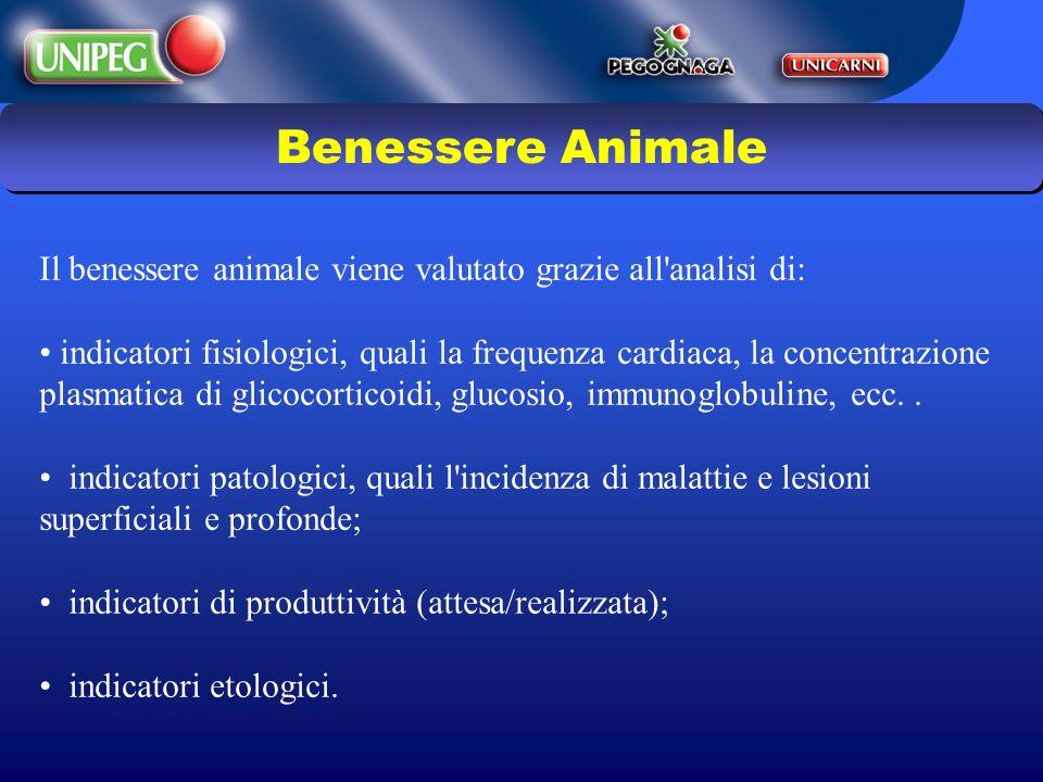 Il benessere animale viene valutato grazie all'analisi di: indicatori fisiologici, quali la frequenza cardiaca, la concentrazione plasmatica di glicoc