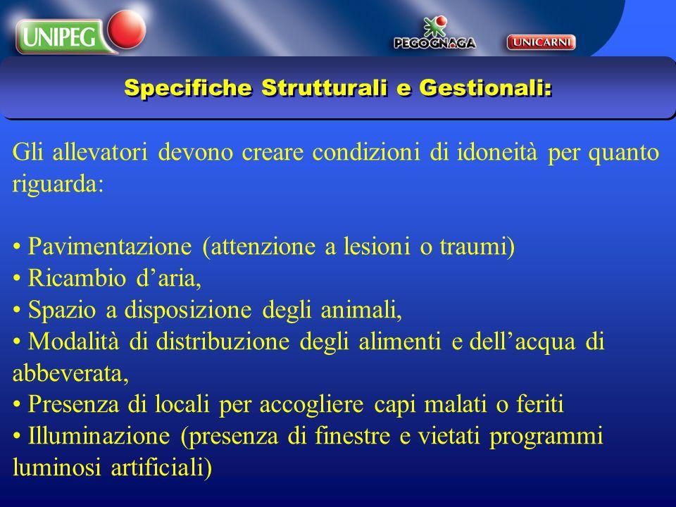 Specifiche Strutturali e Gestionali: Gli allevatori devono creare condizioni di idoneità per quanto riguarda: Pavimentazione (attenzione a lesioni o t