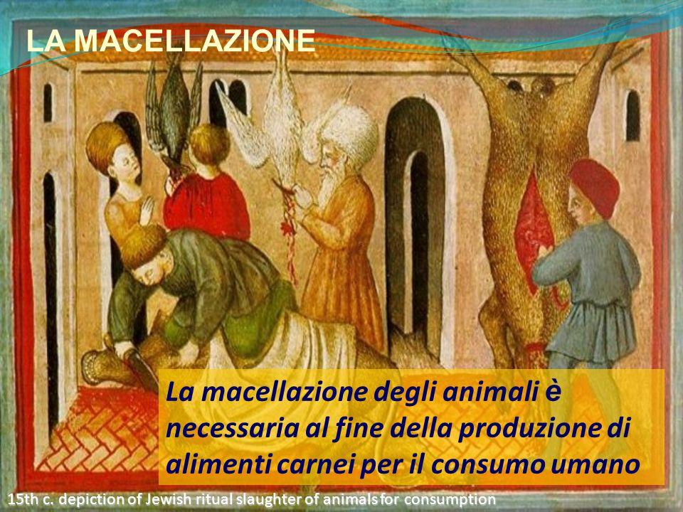 LA MACELLAZIONE La macellazione degli animali è necessaria al fine della produzione di alimenti carnei per il consumo umano 15th c. depiction of Jewis