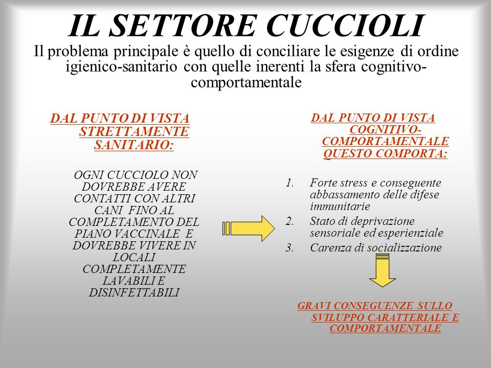 IL SETTORE CUCCIOLI Il problema principale è quello di conciliare le esigenze di ordine igienico-sanitario con quelle inerenti la sfera cognitivo- com