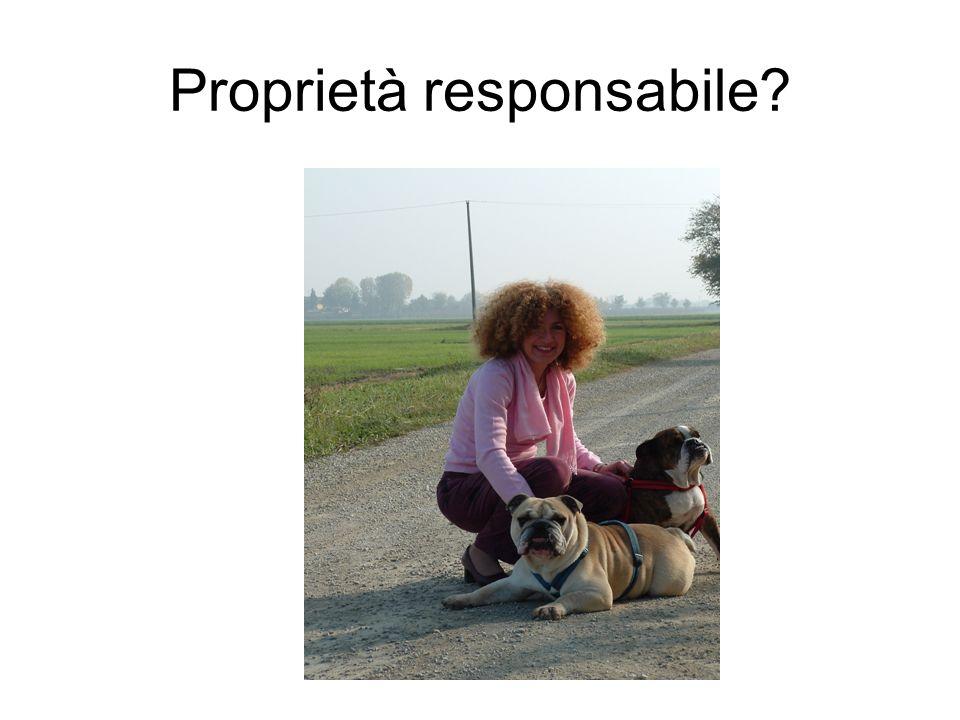 Proprietà responsabile?