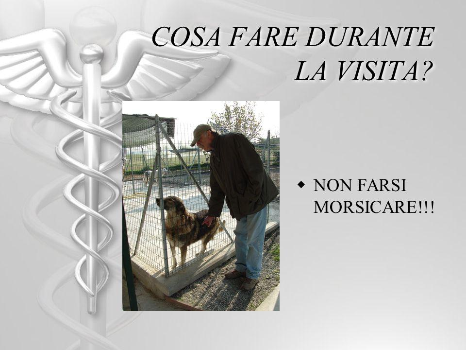 COSA FARE DURANTE LA VISITA? NON FARSI MORSICARE!!!