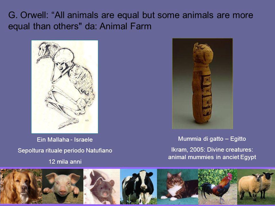 Aristotele parla di un progressivo perfezionamento delle cose viventi dalla materia inanimata alle piante, agli animali e infine alluomo.