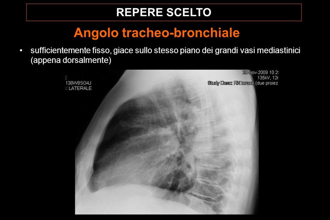 REPERE SCELTO Angolo tracheo-bronchiale sufficientemente fisso, giace sullo stesso piano dei grandi vasi mediastinici (appena dorsalmente)