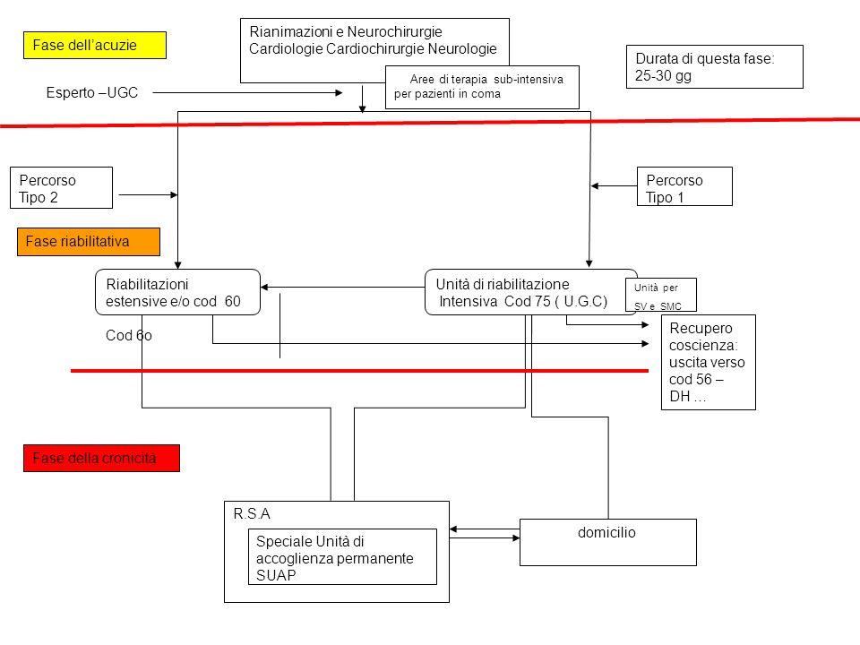 Riabilitazioni estensive e/o cod 60 Cod 6o Unità di riabilitazione Intensiva Cod 75 ( U.G.C) domicilio R.S.A Speciale Unità di accoglienza permanente