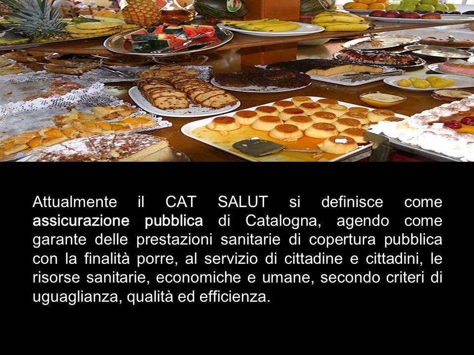 Attualmente il CAT SALUT si definisce come assicurazione pubblica di Catalogna, agendo come garante delle prestazioni sanitarie di copertura pubblica con la finalit à porre, al servizio di cittadine e cittadini, le risorse sanitarie, economiche e umane, secondo criteri di uguaglianza, qualit à ed efficienza.
