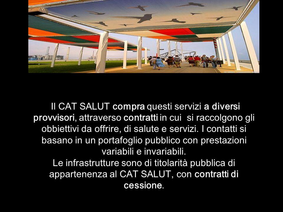 Il CAT SALUT compra questi servizi a diversi provvisori, attraverso contratti in cui si raccolgono gli obbiettivi da offrire, di salute e servizi.