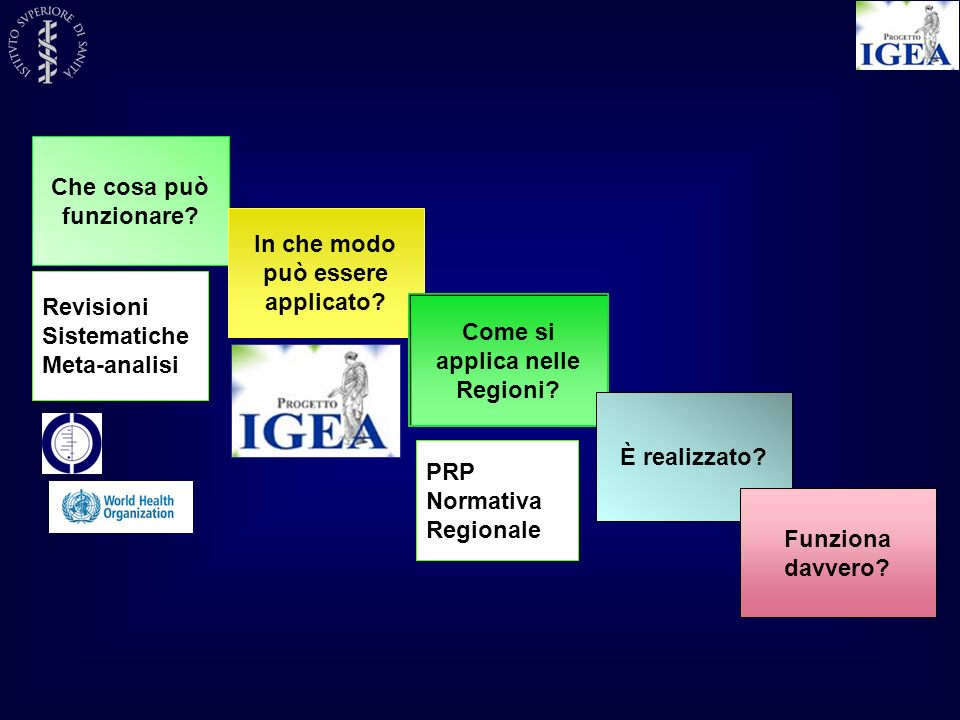 Che cosa può funzionare? In che modo può essere applicato? Come si applica nelle Regioni? È realizzato? Funziona davvero? Revisioni Sistematiche Meta-