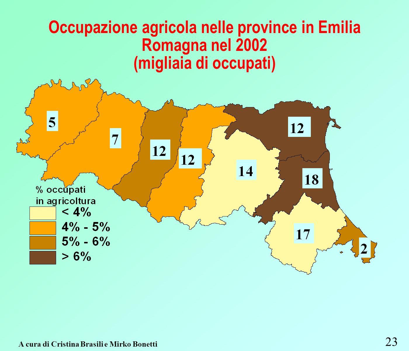 Occupazione agricola nelle province in Emilia Romagna nel 2002 (migliaia di occupati) 23 A cura di Cristina Brasili e Mirko Bonetti