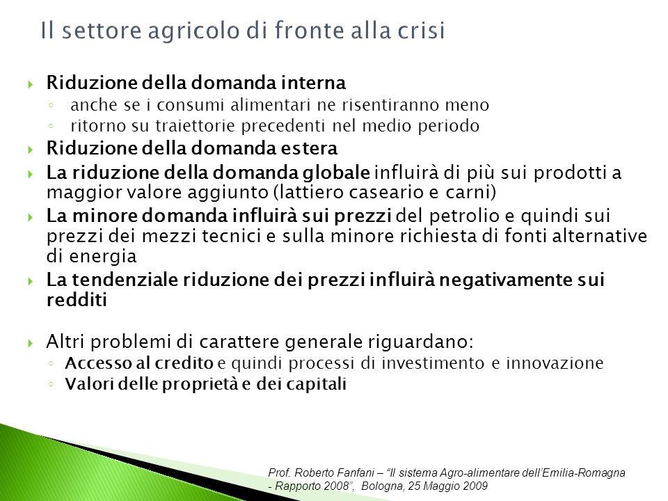 Prof. Roberto Fanfani – Il sistema Agro-alimentare dellEmilia-Romagna - Rapporto 2008, Bologna, 25 Maggio 2009 Il settore agricolo di fronte alla cris