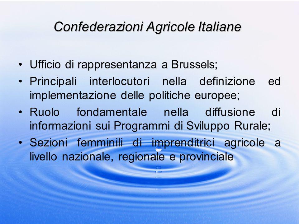 Confederazioni Agricole Italiane Ufficio di rappresentanza a Brussels; Principali interlocutori nella definizione ed implementazione delle politiche e
