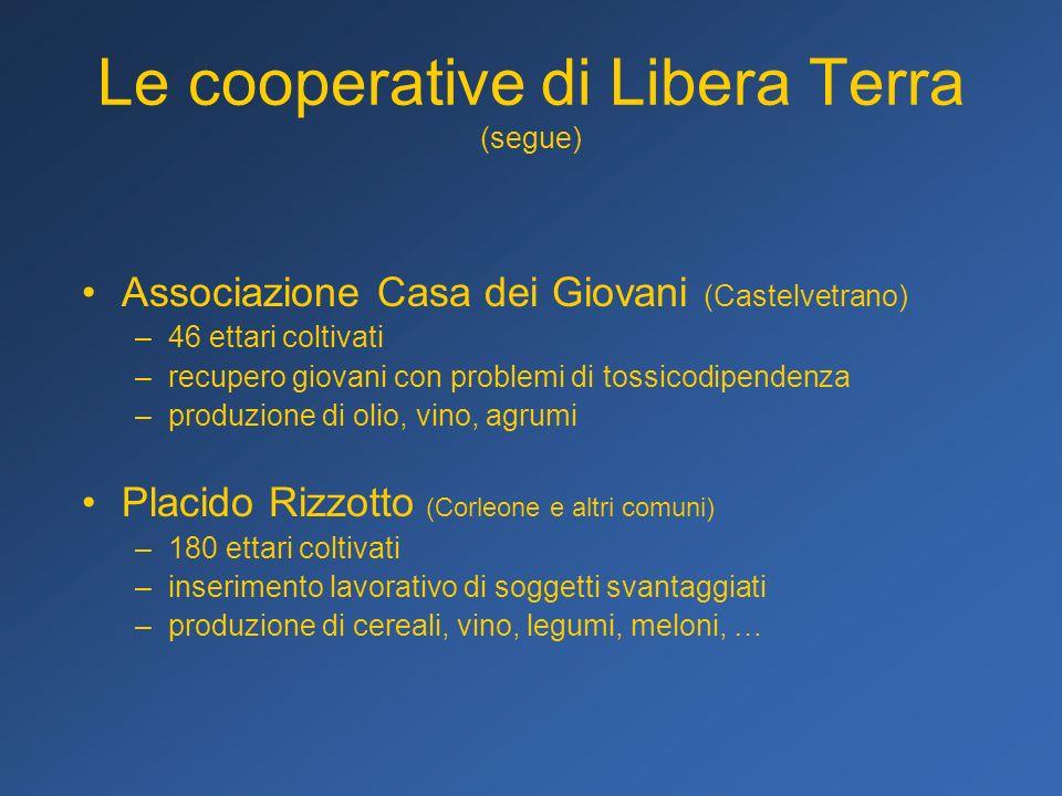 Le cooperative di Libera Terra (segue) Associazione Casa dei Giovani (Castelvetrano) –46 ettari coltivati –recupero giovani con problemi di tossicodip