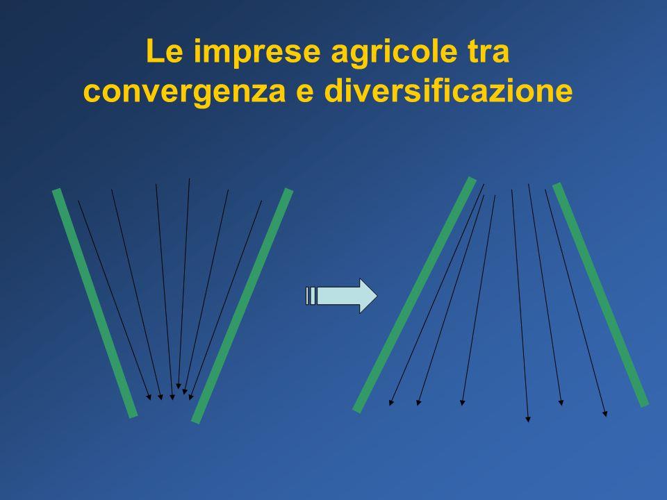 Limpresa agricola diversificazione del reddito economie di scopo radicamento locale responsabilità sociale marchio etico