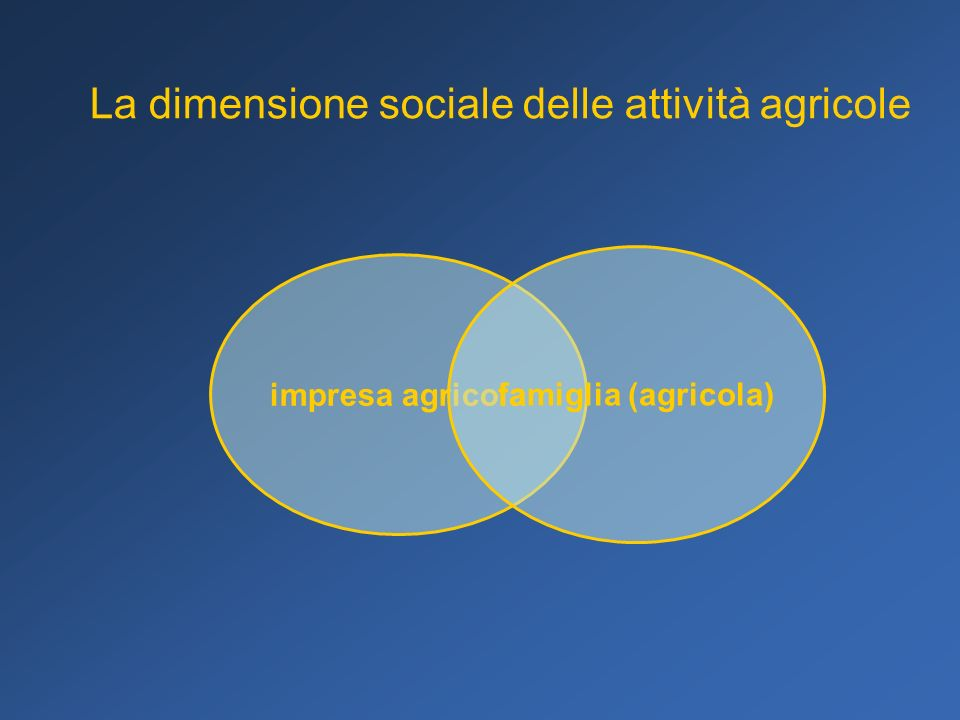 Comunità locale servizi alla persona capitale sociale qualità della vita sviluppo locale