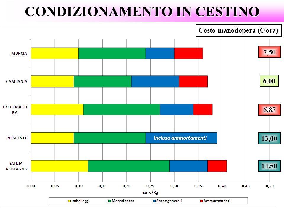 CONDIZIONAMENTO IN CESTINO Costo manodopera (/ora) 13,00 6,00 6,85 14,50 7,50 incluso ammortamenti