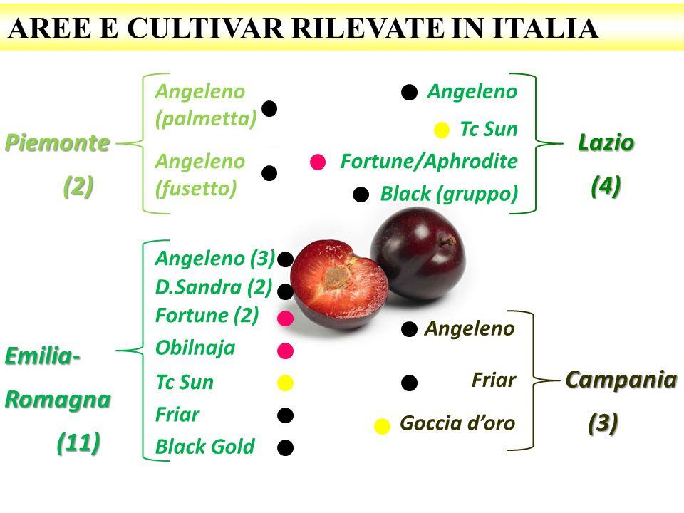 AREE E CULTIVAR RILEVATE IN ITALIA Piemonte(2) Angeleno (palmetta) Emilia-Romagna(11) Angeleno (3) D.Sandra (2) Fortune (2) Obilnaja Tc Sun Lazio(4) A