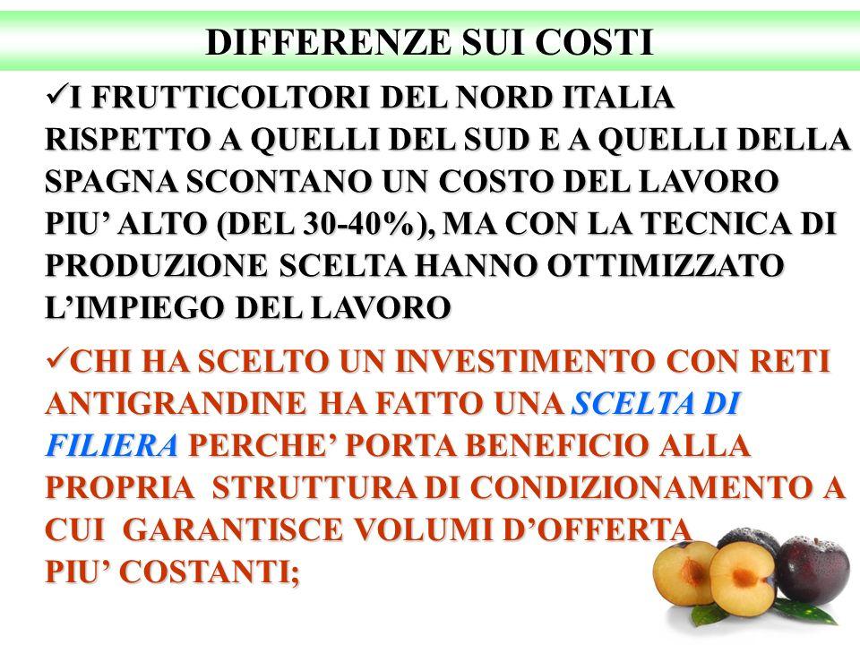 DIFFERENZE SUI COSTI I FRUTTICOLTORI DEL NORD ITALIA RISPETTO A QUELLI DEL SUD E A QUELLI DELLA SPAGNA SCONTANO UN COSTO DEL LAVORO PIU ALTO (DEL 30-4