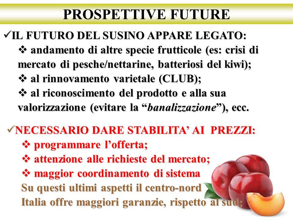 PROSPETTIVE FUTURE IL FUTURO DEL SUSINO APPARE LEGATO: IL FUTURO DEL SUSINO APPARE LEGATO: andamento di altre specie frutticole (es: crisi di mercato