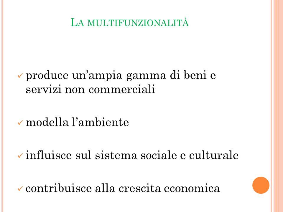 L A MULTIFUNZIONALITÀ produce unampia gamma di beni e servizi non commerciali modella lambiente influisce sul sistema sociale e culturale contribuisce