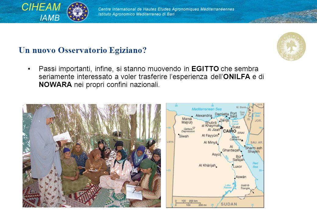 Passi importanti, infine, si stanno muovendo in EGITTO che sembra seriamente interessato a voler trasferire lesperienza dellONILFA e di NOWARA nei propri confini nazionali.