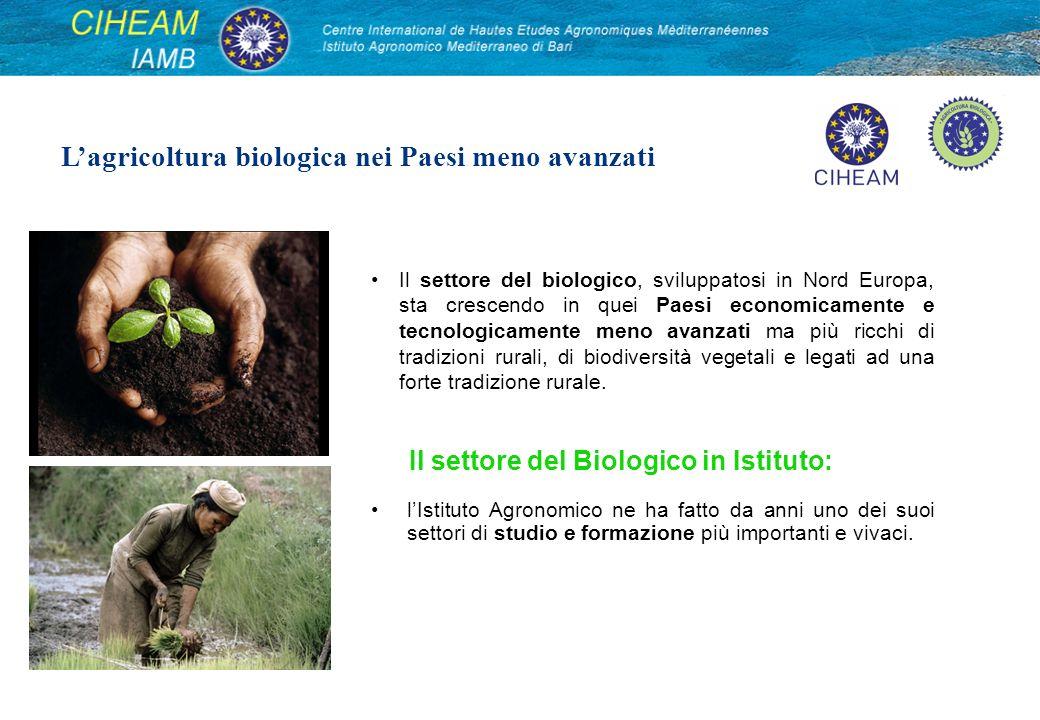 lIstituto Agronomico ne ha fatto da anni uno dei suoi settori di studio e formazione più importanti e vivaci. Lagricoltura biologica nei Paesi meno av