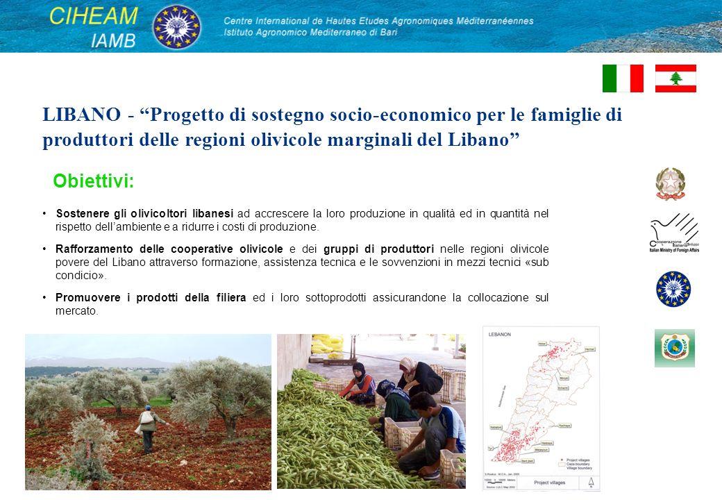 LIBANO - Progetto di sostegno socio-economico per le famiglie di produttori delle regioni olivicole marginali del Libano Sostenere gli olivicoltori libanesi ad accrescere la loro produzione in qualità ed in quantità nel rispetto dellambiente e a ridurre i costi di produzione.