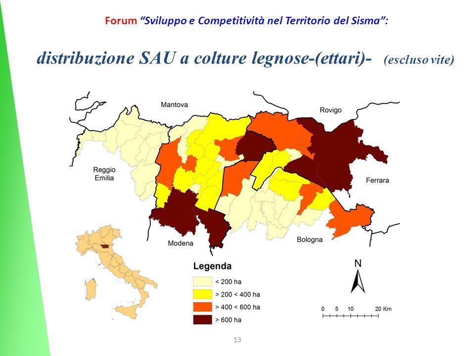 13 Forum Sviluppo e Competitività nel Territorio del Sisma: distribuzione SAU a colture legnose-(ettari)- (escluso vite)